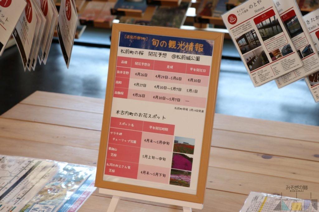 【旬の観光情報ボード】GWは松前の桜を見に行こう!