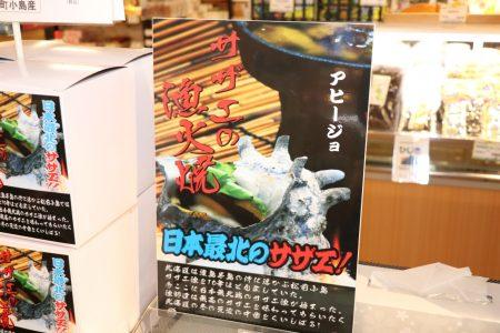【日本最北】松前小島産サザエ入荷!