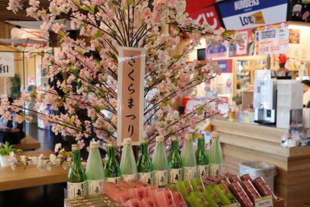 もうすぐ桜の季節です♪GWプレ告知